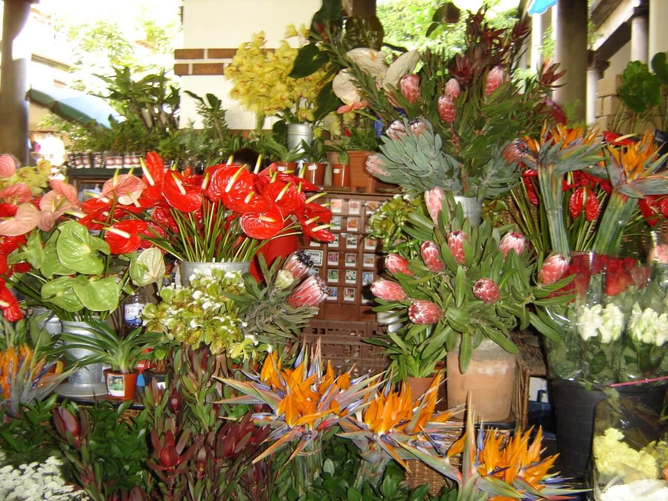 Mercado dos Lavradores Ilha da Madeira - Flores da Madeira