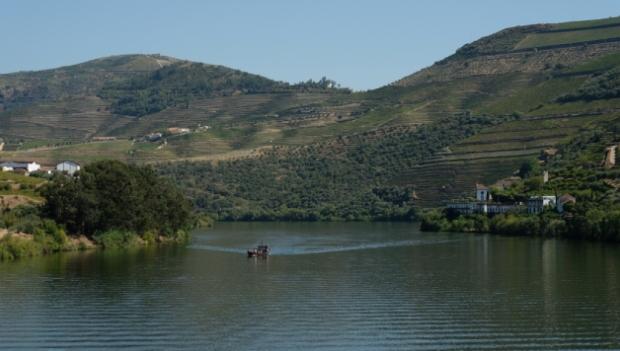 Tour Vale do Douro, Vila de Pinhão e Amarante | Vale do Douro